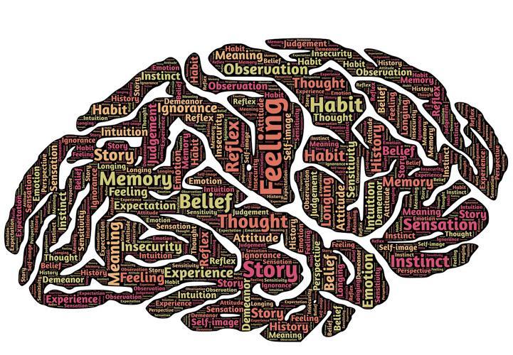 Cerebro, memorizar, pensamiento