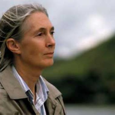 Biografía de Jane Goodall