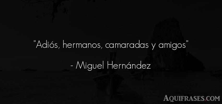 Frase de amistad,  de amistad corta  de Miguel Hernández. Adiós, hermanos, camaradas