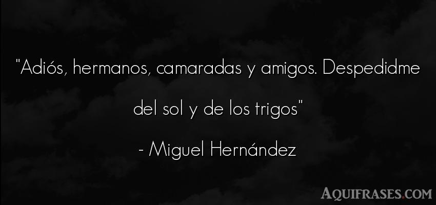 Frase de amistad  de Miguel Hernández. Adiós, hermanos, camaradas