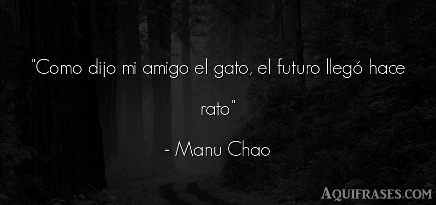 Frase de amistad,  de amistad corta  de Manu Chao. Como dijo mi amigo el gato,