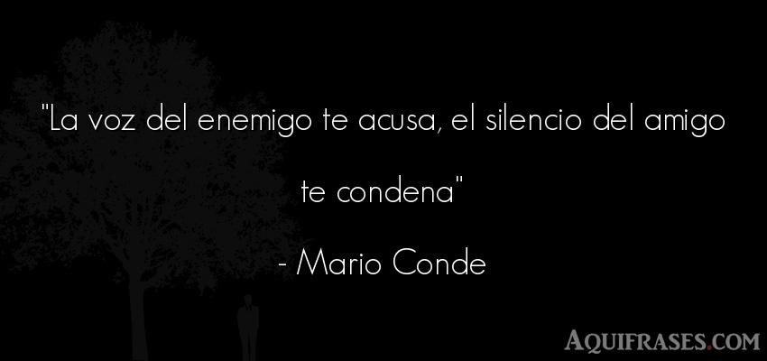 La Voz Del Enemigo Te Acusa El Silencio Del Amigo