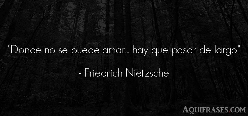 Frase de amor,  filosófica,  de amor corta  de Friedrich Nietzsche. Donde no se puede amar...