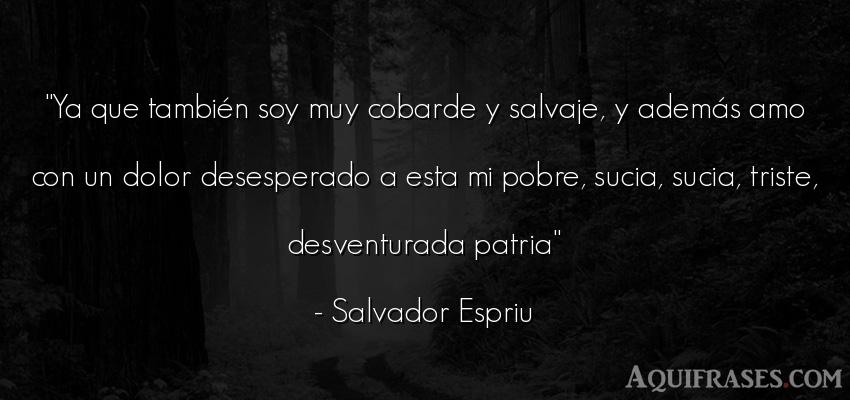Frase de dolor  de Salvador Espriu. Ya que también soy muy
