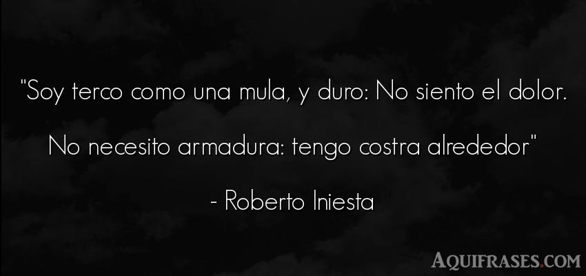 Frase de dolor  de Roberto Iniesta. Soy terco como una mula, y