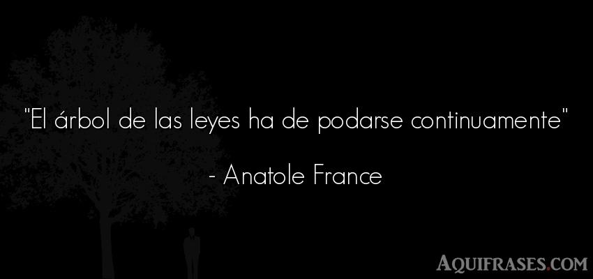 Frase de política  de Anatole France. El árbol de las leyes ha de