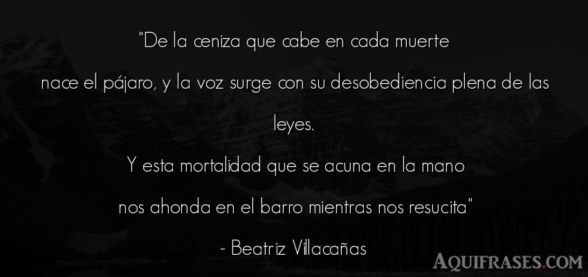 Frase de política  de Beatriz Villacañas. De la ceniza que cabe en