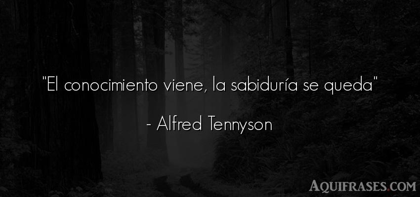 Frase sabia,  sabias corta  de Alfred Tennyson. El conocimiento viene, la
