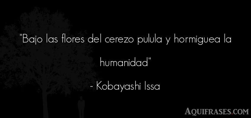 Frase de sociedad  de Kobayashi Issa. Bajo las flores del cerezo