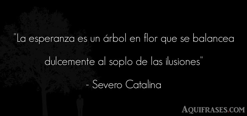 Frase inspiradora  de Severo Catalina. La esperanza es un árbol en