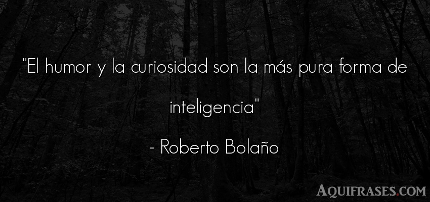 Frase de inteligencia  de Roberto Bolaño. El humor y la curiosidad son