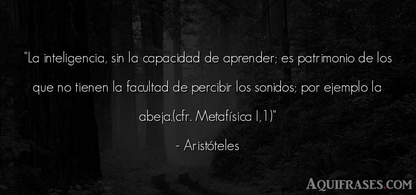 Frase filosófica,  de inteligencia  de Aristóteles. La inteligencia, sin la