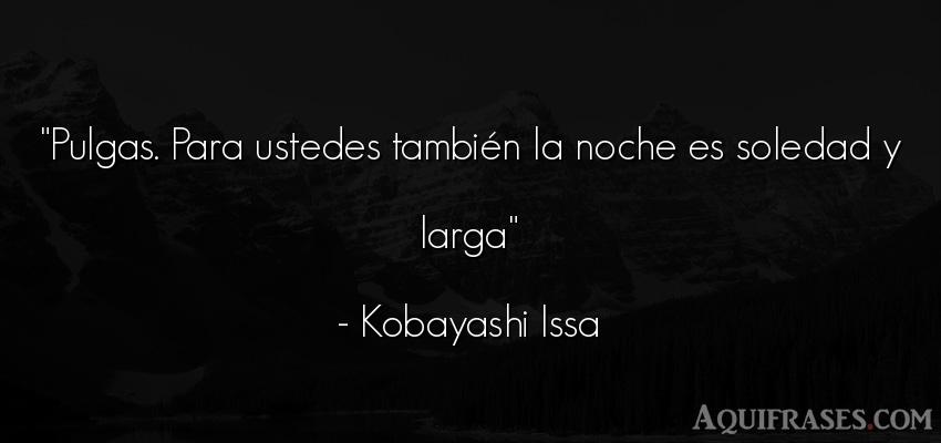 Frase de buenas noche  de Kobayashi Issa. Pulgas. Para ustedes tambié