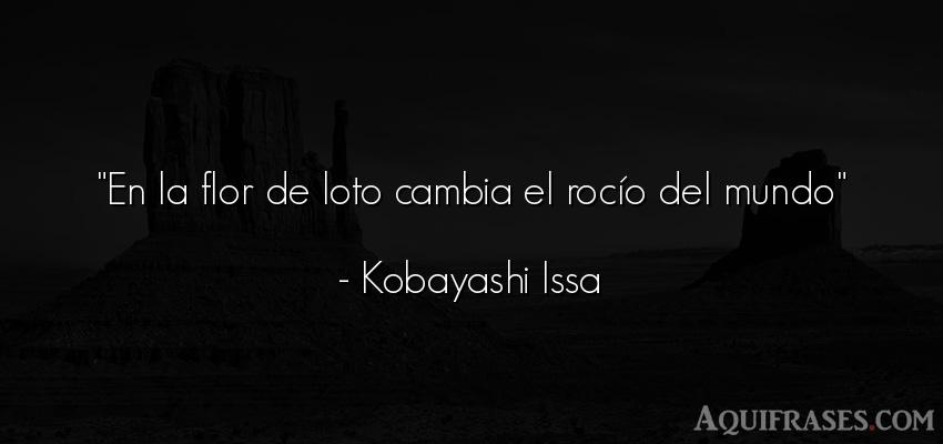 Frase del medio ambiente  de Kobayashi Issa. En la flor de loto cambia el