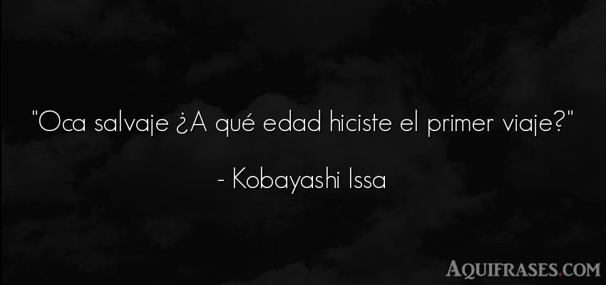 Frase de cumpleaños  de Kobayashi Issa. Oca salvaje ¿A qué edad