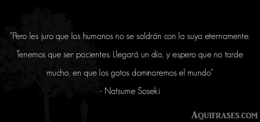Frase del medio ambiente  de Natsume Soseki. Pero les juro que los