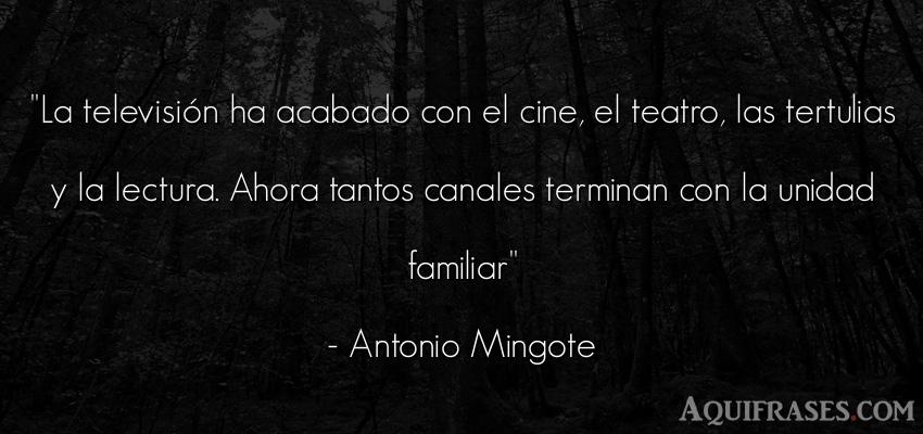 Frase para reflexionar,  para la família  de Antonio Mingote. La televisión ha acabado