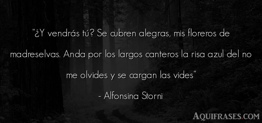 Frase divertida  de Alfonsina Storni. ¿Y vendrás tú? Se cubren