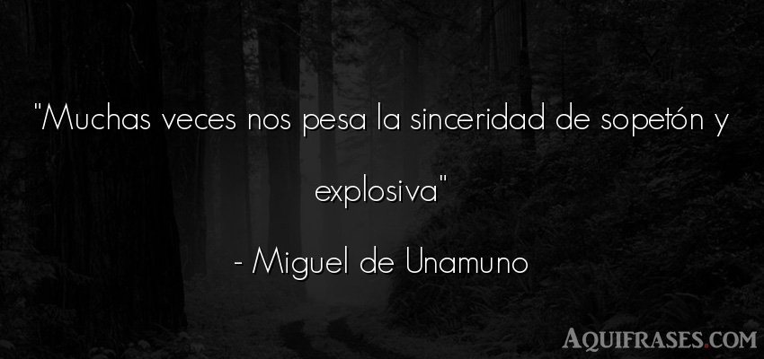 Frase sincera  de Miguel de Unamuno. Muchas veces nos pesa la
