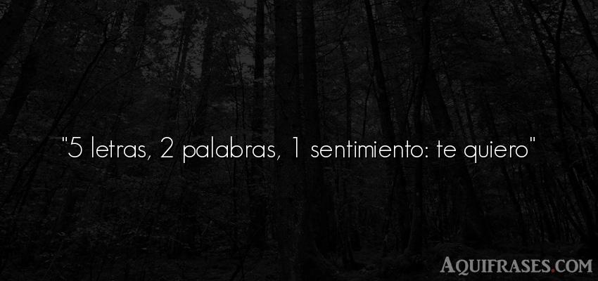 5 Letras 2 Palabras 1 Sentimiento Te Quiero