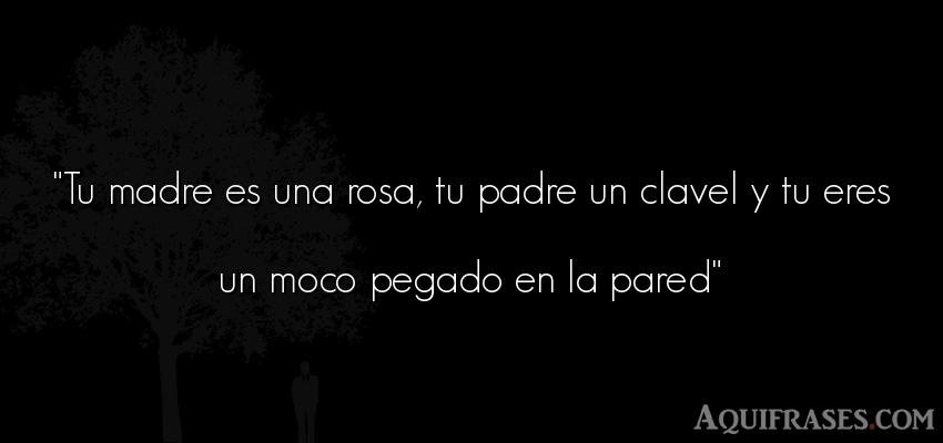 Tu Madre Es Una Rosa Tu Padre Un Clavel Y Tu Eres