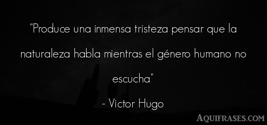 Frase de tristeza  de Victor Hugo. Produce una inmensa tristeza