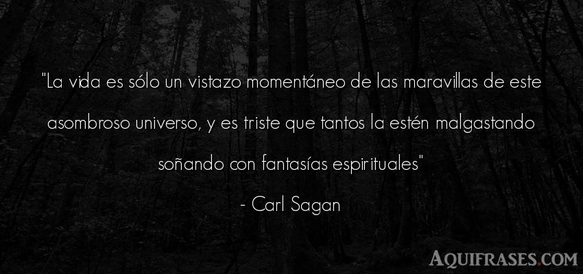 Frase de tristeza  de Carl Sagan. La vida es sólo un vistazo