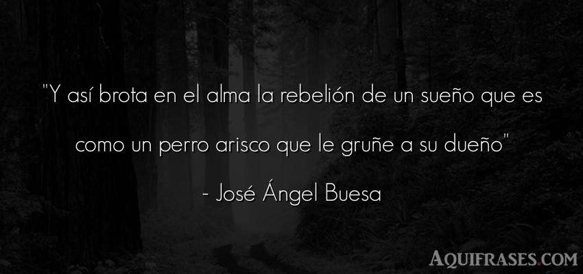 Frase de animales,  de perro  de José Ángel Buesa. Y así brota en el alma la