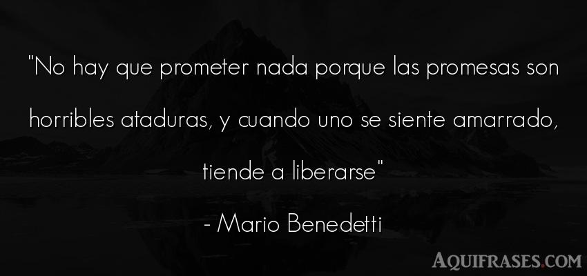 Frase para reflexionar,  de la vida  de Mario Benedetti. No hay que prometer nada