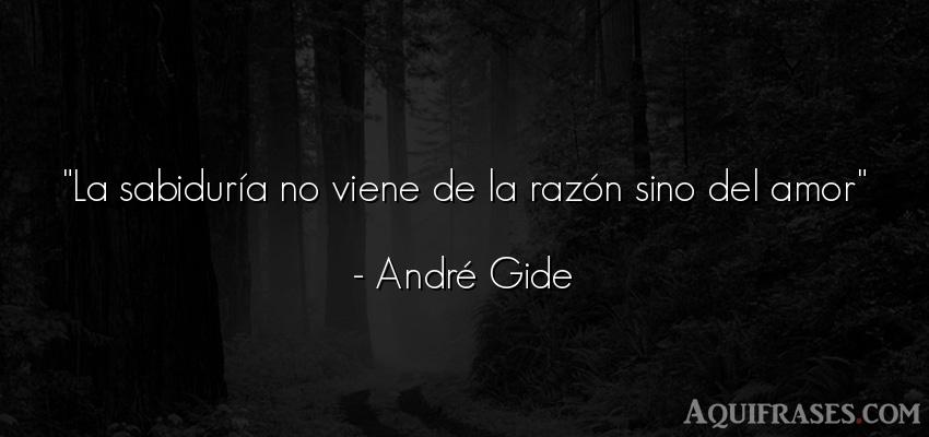 Frase de amor,  de amor corta  de André Gide. La sabiduría no viene de la