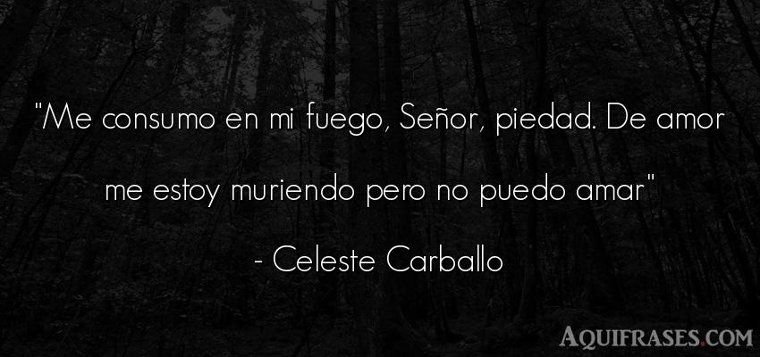 Frase de amor  de Celeste Carballo. Me consumo en mi fuego, Señ