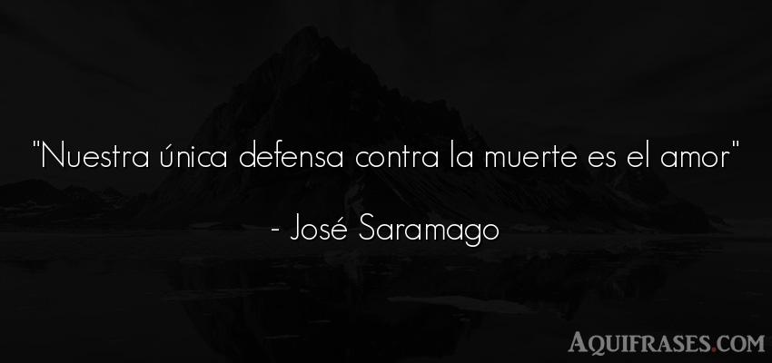 Frase de amor,  de amor corta  de José Saramago. Nuestra única defensa