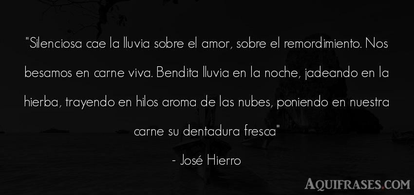 Frase de amor  de José Hierro. Silenciosa cae la lluvia