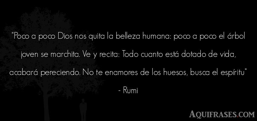 Frase de la vida  de Rumi. Poco a poco Dios nos quita