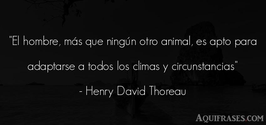 Frase de hombre,  de animales  de Henry David Thoreau. El hombre, más que ningún