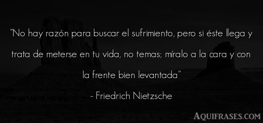 Frase filosófica,  de la vida  de Friedrich Nietzsche. No hay razón para buscar el