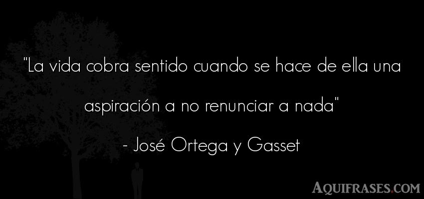 Frase de la vida  de José Ortega y Gasset. La vida cobra sentido cuando