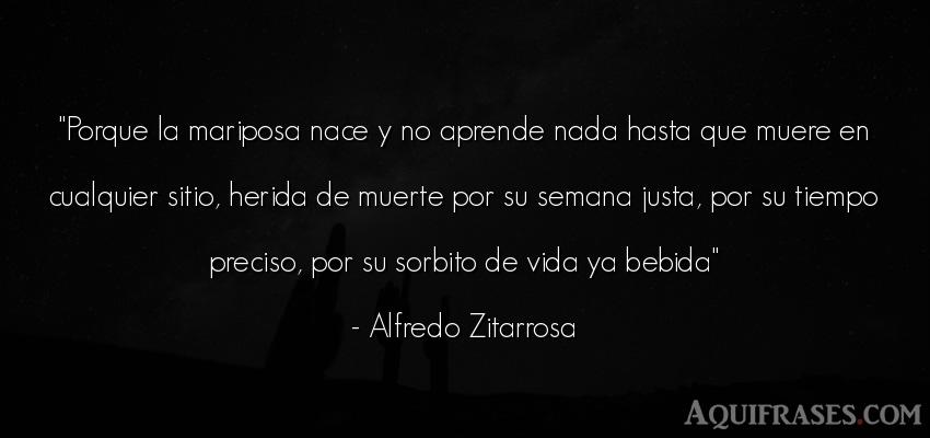 Frase de la vida  de Alfredo Zitarrosa. Porque la mariposa nace y no