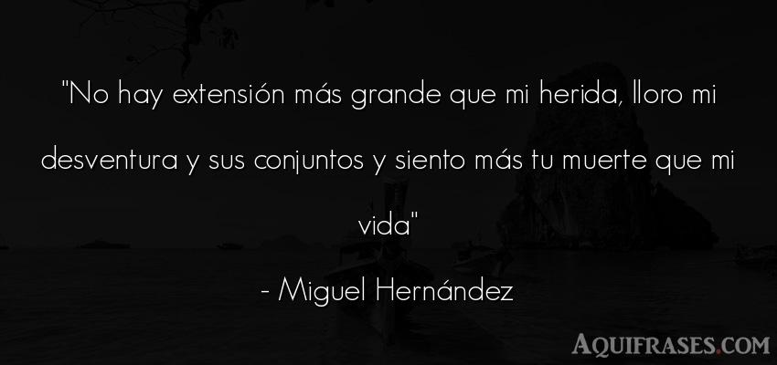 Frase de la vida  de Miguel Hernández. No hay extensión más