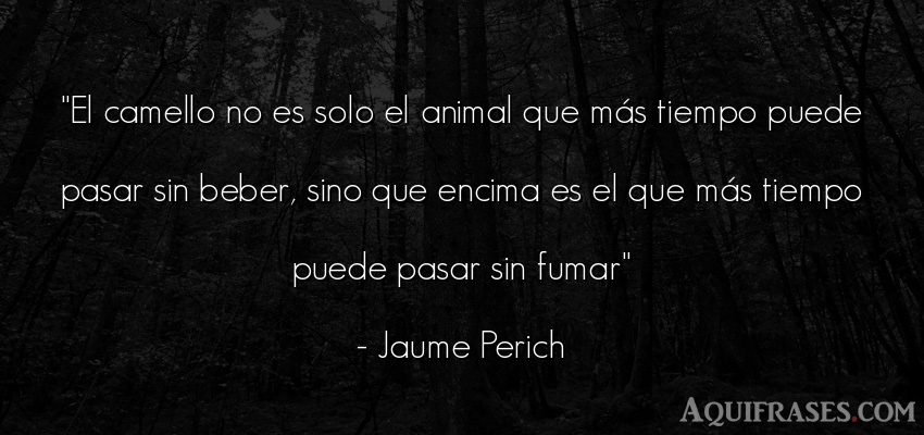 Frase del tiempo,  de animales  de Jaume Perich. El camello no es solo el