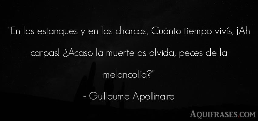 Frase del tiempo  de Guillaume Apollinaire. En los estanques y en las