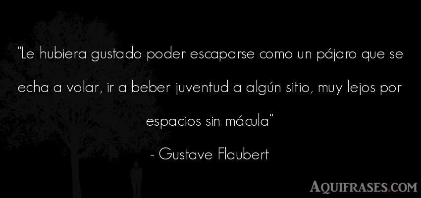 Frase de política  de Gustave Flaubert. Le hubiera gustado poder