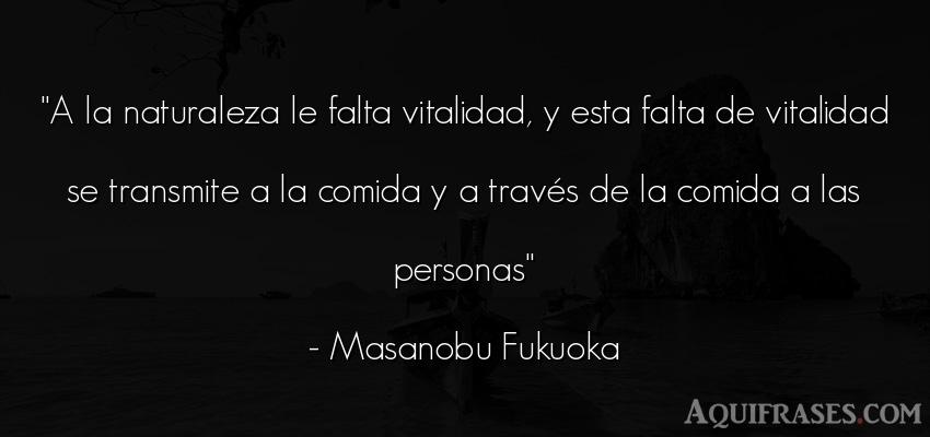 Frase de sociedad  de Masanobu Fukuoka. A la naturaleza le falta