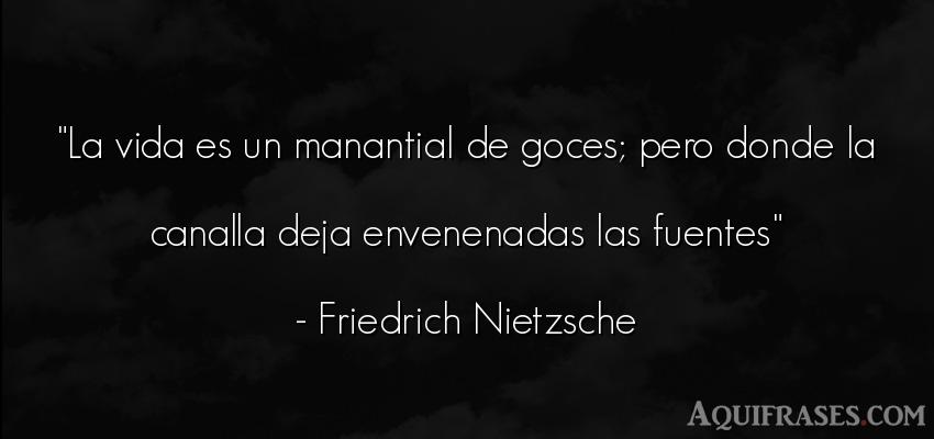 Frase filosófica,  de la vida  de Friedrich Nietzsche. La vida es un manantial de