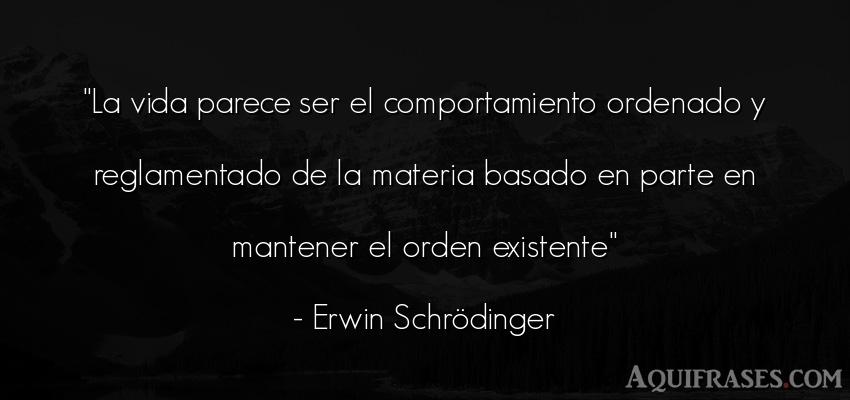 Frase de la vida  de Erwin Schrödinger. La vida parece ser el