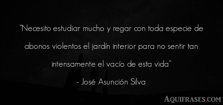 Frase de la vida  de José Asunción Silva. Necesito estudiar mucho y