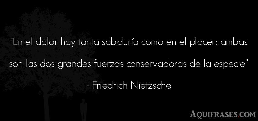 Frase filosófica,  de fuerza  de Friedrich Nietzsche. En el dolor hay tanta