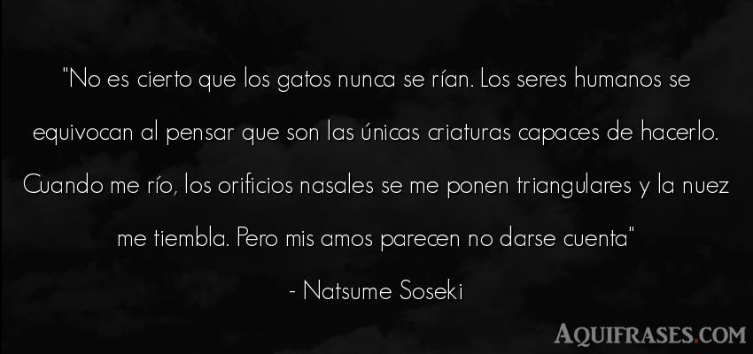 Frase para reflexionar  de Natsume Soseki. No es cierto que los gatos