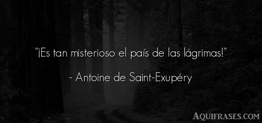 Frase de política  de Antoine de Saint-Exupery. ¡Es tan misterioso el país
